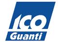 IcoGuanti